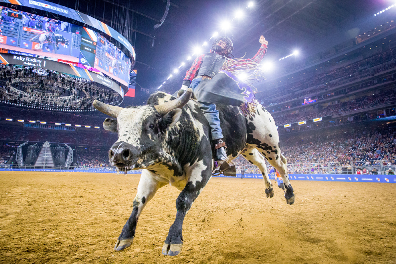 Houston Livestock Show And Rodeo Full Season Package (3/3 - 3/21) at NRG Stadium