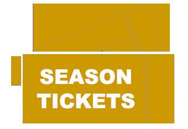 2021 Houston Texans Season Tickets (Includes Tickets to All Regular Season Home Games) at NRG Stadium